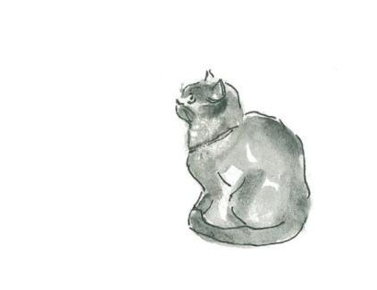 card 2 cat sitting
