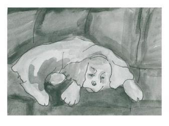 card 4 sleeping dog